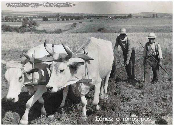 Δυο διαφορετικοί γεωργοί
